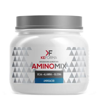 AMINO MIX 300 G