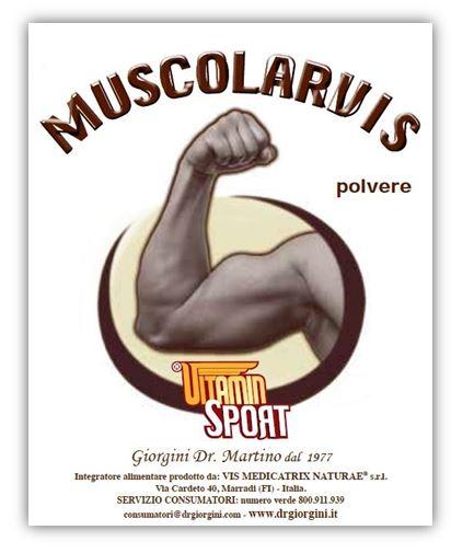 MUSCOLARVIS VITAMINSPORT 500 G - Farmaseller