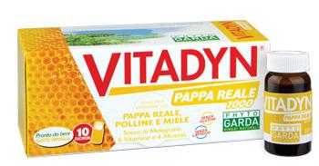 VITADYN PAPPA REALE 1000 10 FLACONCINI 10 ML