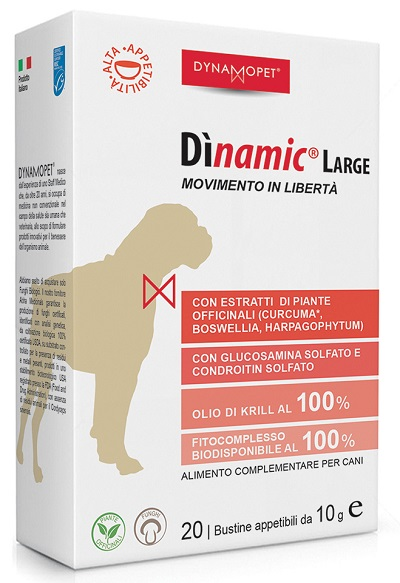 DINAMIC LARGE 20 BUSTINE 10 G - Farmaseller