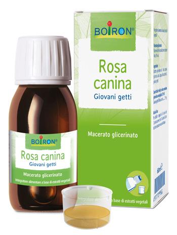 ROSA CANINA MACERATO GLICERICO 60 ML INT - Parafarmacia la Fattoria della Salute S.n.c. di Delfini Dott.ssa Giulia e Marra Dott.ssa Michela