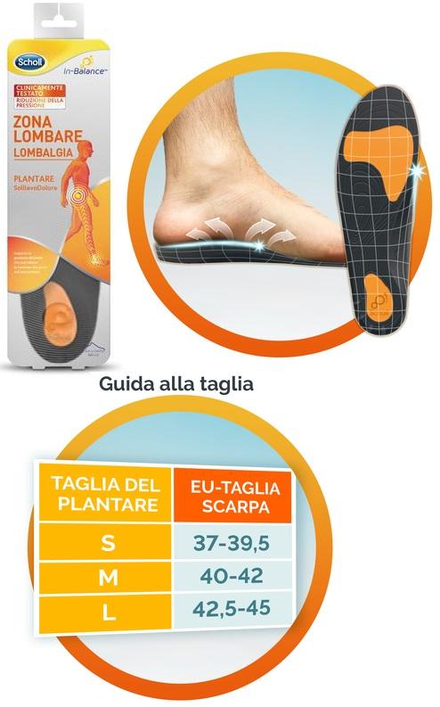 SCHOLL PLANTARE LOMBARE M 2 PEZZI - Parafarmacia la Fattoria della Salute S.n.c. di Delfini Dott.ssa Giulia e Marra Dott.ssa Michela