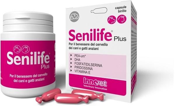 SENILIFE PLUS 60 CAPSULE - Farmaseller